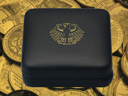 100 Euro Goldmünze im Case