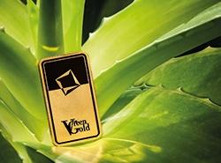 Green Gold Feingoldbarren von Valcambi auf einer Aloe Vera