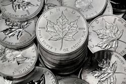 Kanadischer Maple Leaf (Silbermünze)